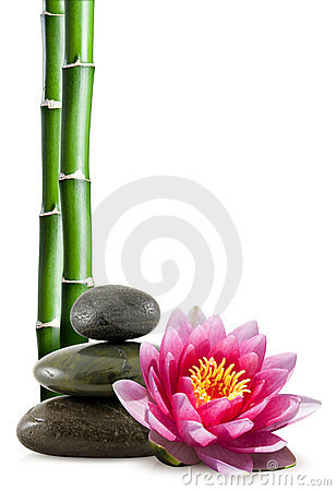 Free Bamboo, Spa Stones And Lotus Royalty Free Stock Photos - 17489848