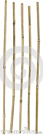Free Bamboo Sticks Stock Image - 17915581