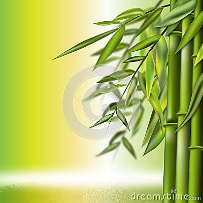 Bamboo still life