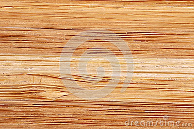 Bamboo texture with horizontal stripes