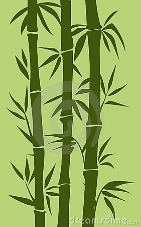 Bamboo tree illustration