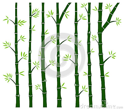 Bamboo Tree Wall Decal