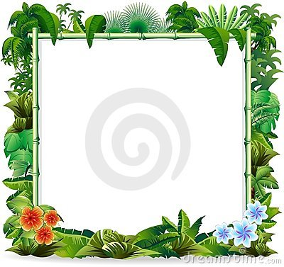 Free Bamboo Tropical Jungle Background Stock Photo - 19338890