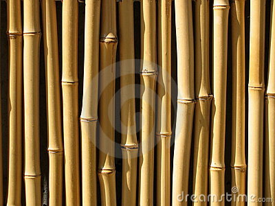 Bamboo Wall Royalty Free Stock Photography - Image: 1275887