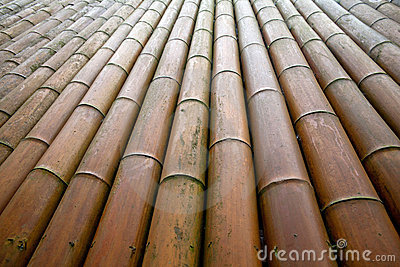 Bamboo wall/bamboo house