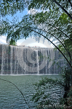 The Bamboo and Waterfall