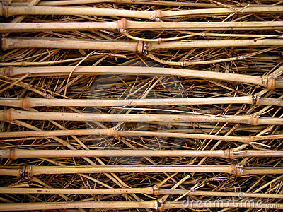 Bamboo wattle texture