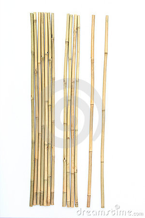 Bamboo on white background