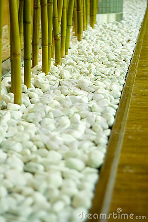 Bamboo in white pebbles