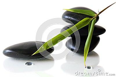 Bambu e seixos