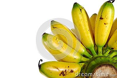 Banana Series 02