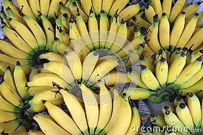 Banana Sweet Hand