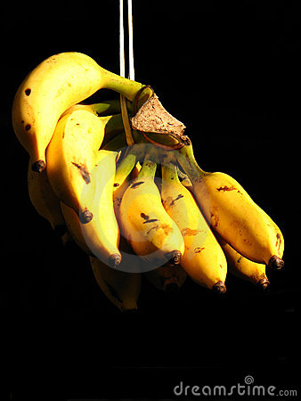 Free Bananas Royalty Free Stock Image - 3093646