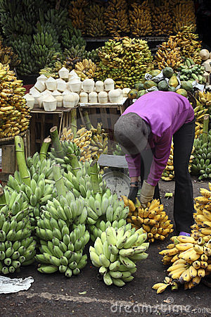Bananas and coconuts on a market stall Editorial Image