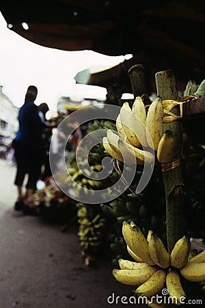 Bananas at market- Phnom Penh, Cambodia