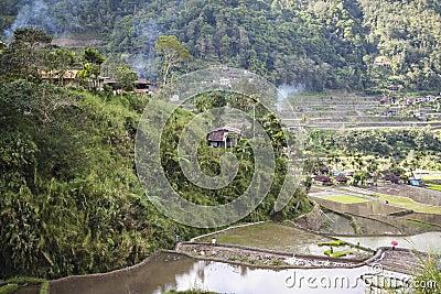 Banaue mountain rice terraces luzon philippines