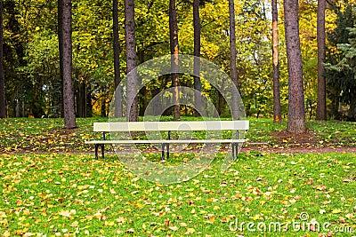 banc de parc en bois photo stock image 61424772. Black Bedroom Furniture Sets. Home Design Ideas