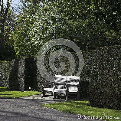 Banc en bois de jardin dans le jardin anglais photo stock for Cendre de bois dans le jardin
