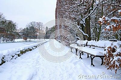 Banco en el parque en el invierno nevoso