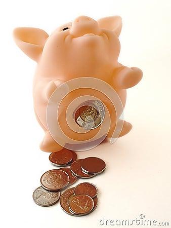 Banco Piggy com dinheiro 2