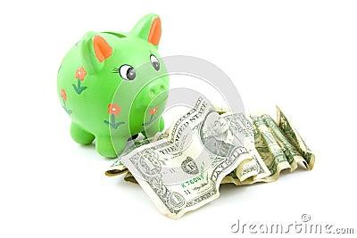 Banco piggy verde com dólares