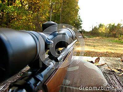 Banco y arma del Shooting