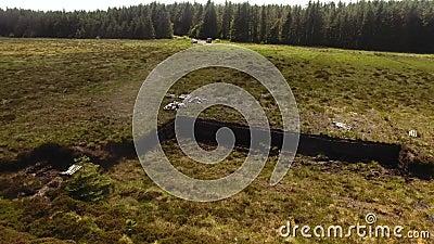 Bancos da turfa do relvado com uma pá em Moss Bog na Irlanda video estoque