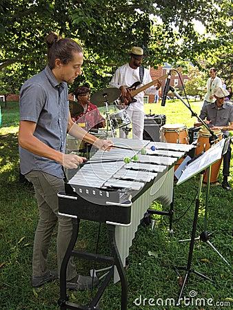 Bande de musique de jazz aux jardins de McLean Image éditorial