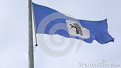 Bandeira com a bras?o da cidade de Yaroslavl R?ssia video estoque