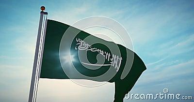 Bandeira da Arábia Saudita acenando no Reino da Arábia Saudita - Vídeo De Movimento Lento De 4.000 X 30.000 video estoque