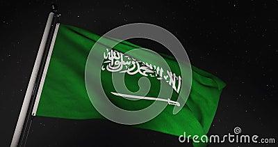 Bandeira da Arábia Saudita acenando no Reino da Arábia Saudita - 4.000 Vídeo De Movimento Lento video estoque