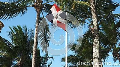 Bandeira da República Dominicana video estoque