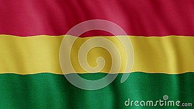 Bandeira de Bolívia vídeos de arquivo