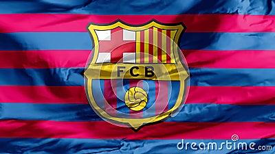 Bandeira do Clube Barcelona vídeos de arquivo