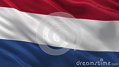 Bandeira dos Países Baixos - laço sem emenda video estoque
