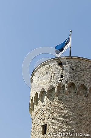 Bandeira estónia em Hermann alto
