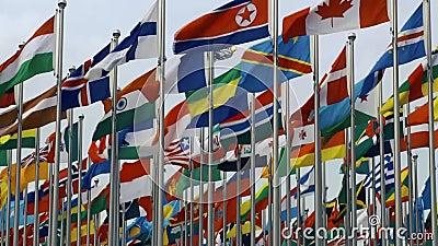 Bandeiras de vários países com a Coreia do Norte na frente e no centro video estoque