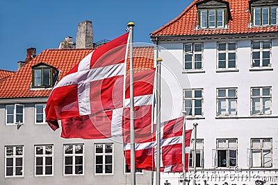 Bandera danesa que agita