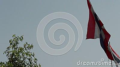 Bandera de Tailandia saludando suavemente al viento almacen de metraje de vídeo