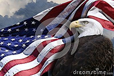 Bandiera americana ed aquila