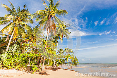 Bangsak beach in blue sky and palm trees