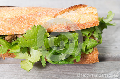 Banh Mi, Vietnamese sandwich filled with shredded chicken and ...