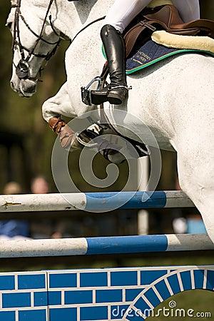 Banhoppning för 015 häst