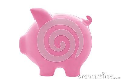 Bank ścieżki świnka
