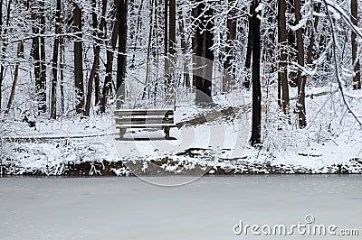 Bank bij de rand van het meer