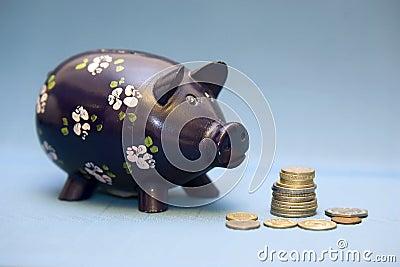 Bank monety Świnka.