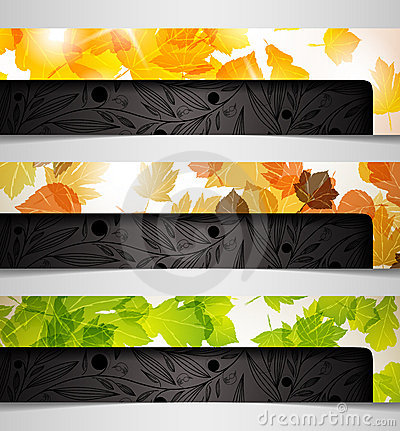 Banner  hybrid autumn leaf combination abstract ba