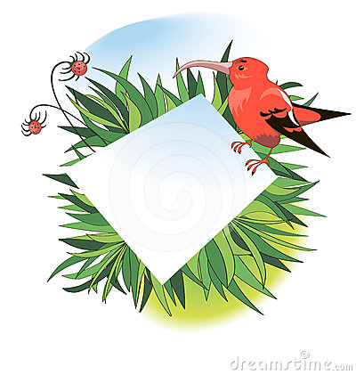 Banner with red tropical bird