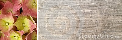 Wooden background banner Stock Photo