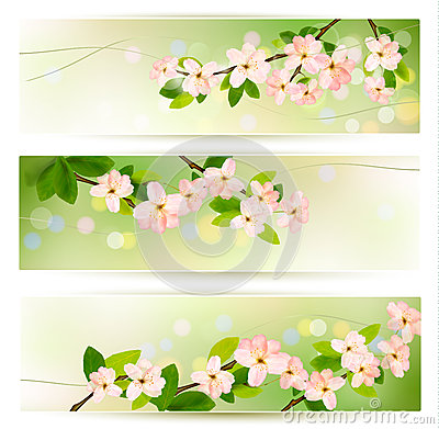 banners with blossoming tree brunch